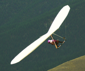 Hang Glider (Courtesy Dennis Thorpe)