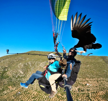 Parahawking in Spain